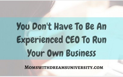 You Don't Have to Be An Experienced CEO to Run Your Own Business