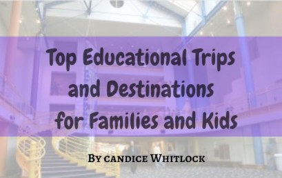 Top Educational Trips And Destinations For Families And Kids